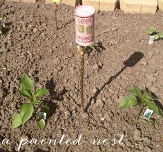 A Painted Nest // DIY tin can garden markers