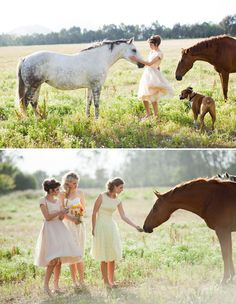 An open field with girls in pretty dresses playing with horses and a boxer.   This is the epitome of me.