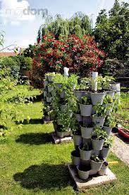 Výsledek obrázku pro malá zahrada Plants, Garden, Paisajes, Plant, Planets