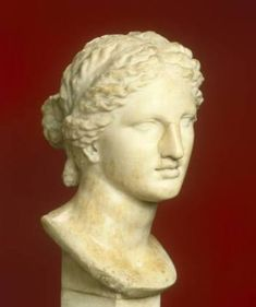 Aphrodite - patty