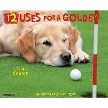 12 Uses for a Golden 2015 Wall Calendar