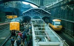 """"""" 55009 arriving at with a farewell tour from via 📸 Electric Locomotive, Diesel Locomotive, Train Pictures, Great Days Out, Electric Train, British Rail, Train Engines, Round Trip, Train Tracks"""