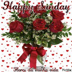 Sunday Greetings, Morning Greetings Quotes, Good Morning Quotes, Good Morning Saturday, Happy Sunday, Vote Sticker, Christmas Wreaths, Christmas Tree, Happy Friendship Day