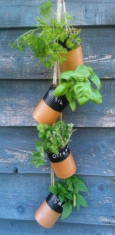 Vertical garden using tin cans