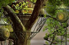 How to Expand Your Outdoor Treehouse Into an Oasis