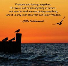 Freedom and love go together. Love is not a reaction. If I love you because you love me, that is mere trade, a thing to be bought in the market; Jiddu Krishnamurti, J Krishnamurti Quotes, Faith Quotes, Life Quotes, Meaningful Quotes, Inspirational Quotes, Healing Words, Love Truths, Because I Love You
