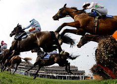 Horses jump a fence during a hurdle race at the Cheltenham Festival horse racing meet in Gloucestershire, western England.    Stefan Wermuth/Reuters