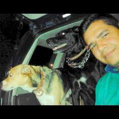#Guardianes #Kathy #Ruffo #Amor #Perrruno #Puro #Criollo #Adopcion #Caninos @cikarsoto