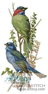 Finch and Blue Bird Cross Stitch Pattern http://www.artecyshop.com/index.php?main_page=product_info&cPath=1_4&products_id=545