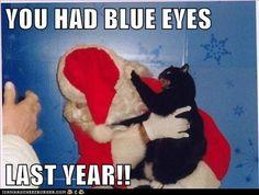 You had blue eyes last year
