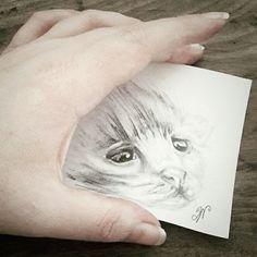 Kitten doodle   The smallest feline is a masterpiece. -Leonardo da Vinci