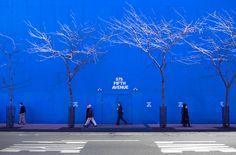 blue New York Murals Street Art, Taste The Rainbow, Good Jokes, Billabong, Cobalt Blue, Reuse, Favorite Color, Wander, Colorful Backgrounds