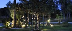 Decoración de Ana en nuestra rotonda, una noche muy especial a la luz de las velas