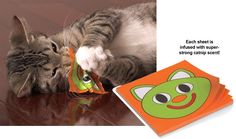 Crinkle & Toss Catnip Scented Papers - For the catnip lover in your life!