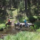 Trail rides are one of the most peaceful ways to experience the most scenic areas of the Park. Bring your own horse or sign up for a ride at the Blue Bell Stables.