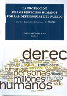 La protección de los derechos humanos por las defensorías del pueblo.  Dykinson, 2013.