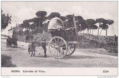 roma-carretto di vino-viaggiata 1911