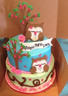 Babies are a hoot! Owl baby shower cake