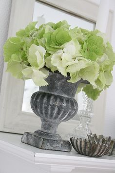 Green white hydrangea in a Frenc urn. Fresh Flowers, White Flowers, Beautiful Flowers, Floral Centerpieces, Floral Arrangements, Hortensia Hydrangea, Hydrangeas, Green Hydrangea, Shades Of Green