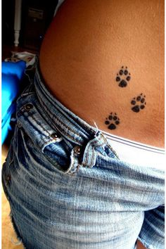 Dogs step.  It represents fidelity, protection, trust, blind love, loyalty.