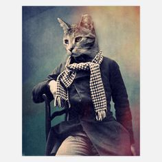 A bit much for a cat, but the scarf (could be ours) shows that this cat, if he were to dress, has class