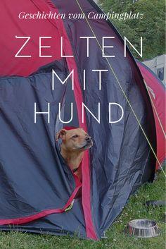 Die besten Tipps für einen entspannten Campingurlaub mit Hund.