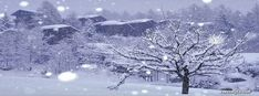 Winter Storm Facebook Cover