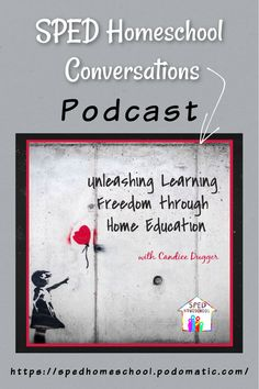 Homeschool Podcast Special Guest, Homeschooling, Freedom, Special Educational Needs, Learning, Get Started, Bullying, Parenting, Student
