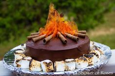 How impressive is this Campfire Cake?