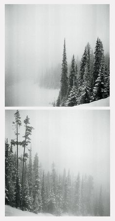 The air crackled with death and ghosts, the mountains masking iron and the trees masking villains at every turn. Here, it snowed, and when it did not, it rained ice. Here, they came to freeze their bodies after they had frozen their hearts. This was Etny, and he was perturbed at the realness of it.
