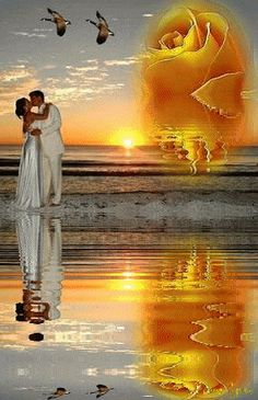 Gif Pictures, Love Pictures, Beautiful Pictures, Beautiful Dream, Beautiful Sunset, Gif Bonito, Romantic Pictures, Love Kiss, Romantic Moments