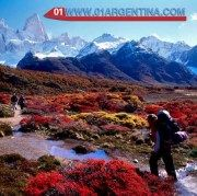 Argentina is Nature Friendly, penguins, whales, crystalline lakes Hills of a thousand colors, waterfalls that marvel, landscapes of another planet. Deep forests and crystalline lakes. Colonies of penguins and whales in the South Seas. Immense, magical, touching. Such are the natural scenarios of Argentina. Read more in link>>>  Check your #Travel #Tours #Packages #Vacations at #PuertoMadryn in #Argentina. Different #destinations are waiting for You! 01 Argentina Travel Agency.