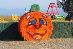 Join us at the Wooden Shoe Pumpkin Fest We see the desire for not only for our own family, but in other families to get out to the farm and experience memories that can't be found in cities or subu…