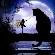 Black Cat, Moon & Fairy Silhouette:                                                                                                                                                                                 More
