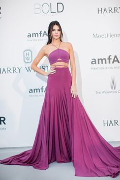 The Best Celebrity Looks From the Cannes amfAR Gala - Kendall in Calvin Klein Collection & Chopard jewelry