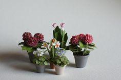 Miniature dollhouse blog , 1/12 scale, dolls house flowers and plants.1:12. dollshouse, miniature garden, little rabbit miniatures.