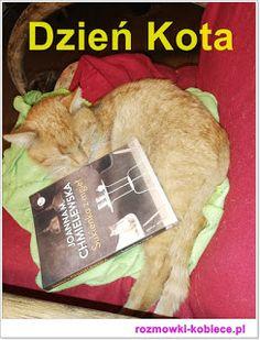 Kobiece rozmówki przy herbacie- podróże, książki, kuchnia, życie na wsi: Koty w naszym wiejskim domu