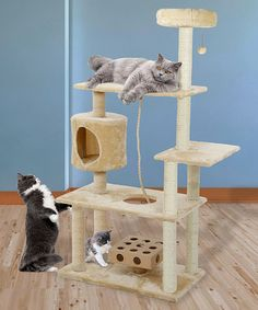 This Deluxe Cat IQ Tree by Furhaven Pet Products is perfect! #zulilyfinds