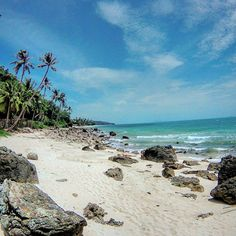 Reposting @david.weninger: Koh Samui, Thailand 🇹🇭 . Really looking forward to upcoming beach-adventures 😄🌴🌊 . Where's your favorite beach? 😊 . #beach#love#kohsamui#thailand#asia#blue#sky#sea#palms#summer#travel #traveling #TFLers #vacation #instatravel #instago #trip #photooftheday #fun #instapassport #instatraveling #mytravelgram #travelgram #travelingram #igtravel#travelmomente#reisenfuerweltentdecker#travelphotography#travelawesome
