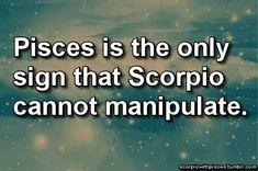 Pisces vs Scorpio
