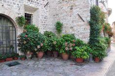 Assisi. Italië, Umbrië. Eigen foto