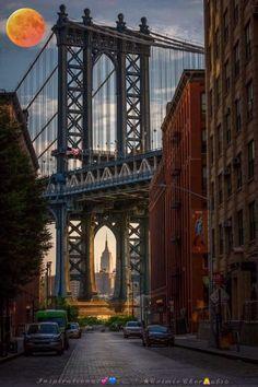 Manhattan Night, Manhattan Bridge, Manhattan New York, Manhattan Cocktail, Manhattan Apartment, Manhattan Skyline, Brooklyn Bridge, Brooklyn Nyc, Lower Manhattan
