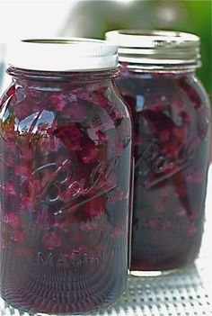 Blueberry pie filling - 10 Homemade Pie Fillings, Canning Recipes. This should also work or Blackberry Raspberry Ligonberry, Boysenberry Canning Tips, Home Canning, Canning Recipes, Canning Labels, Jar Recipes, Canning Food Preservation, Preserving Food, Blueberry Picking, Blueberry Bushes