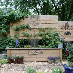 This raised bed has a built-in privacy wall, perfect for garden art and vines.