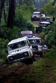 Land Rovers!