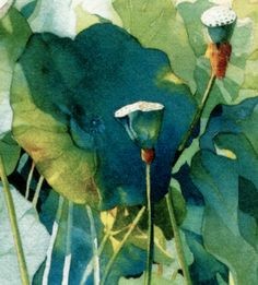 Lotus, Marlies Merk Najaka, Watercolor Love the teal in this image - and the way the light and shadows play.