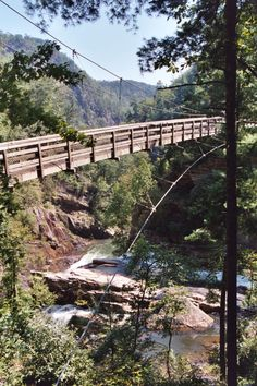 Have you ever ventured across the Tallulah Gorge Suspension Bridge? Have you ever ventured across the Tallulah Gorge Suspension Bridge? Tallulah Falls Georgia, Tallulah Gorge, Vacation Places, Vacation Spots, Places To Travel, Travel Destinations, Greece Vacation, Dream Vacations, Brunei