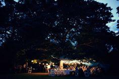 Anitra and Ben's Relaxed Garden Wedding Garden Wedding, Dolores Park, Wedding Venues, Australia, Travel, Wedding Reception Venues, Viajes, Wedding Places, Trips