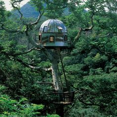 The uniqueness of the Tree House with art and architecture in the Japanese forest canopy. This tree house has a transparent roof design with three floors that have a height like a skyscraper. Cool Tree Houses, Amazing Houses, Awesome House, Unusual Homes, Unusual Art, Outdoor Living, Outdoor Decor, In The Tree, Tree Tree
