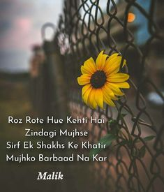Aab to kar Liya bacha hi kya hai ae zindagi mere pass maut ke alava Story Quotes, Love Quotes, Mirza Ghalib Poetry, Dear Crush, Never Leave You, Heart Touching Shayari, Ramadan Mubarak, Zindagi Quotes, Feeling Lonely